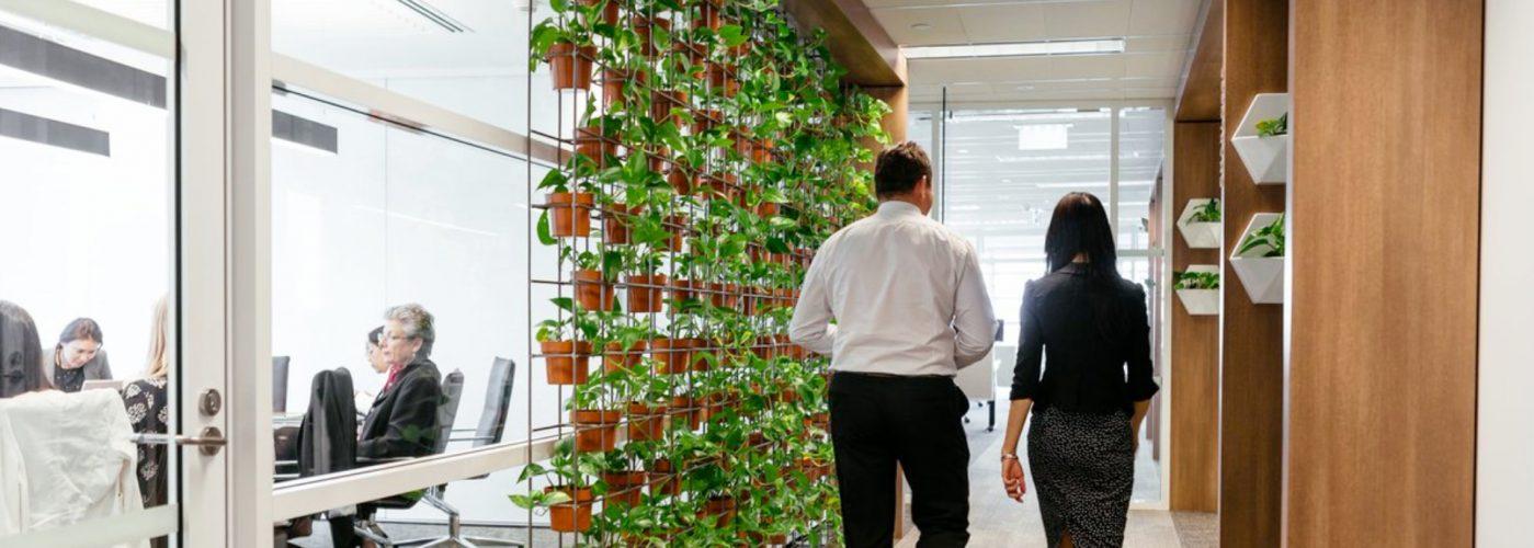 oficinas sustentables